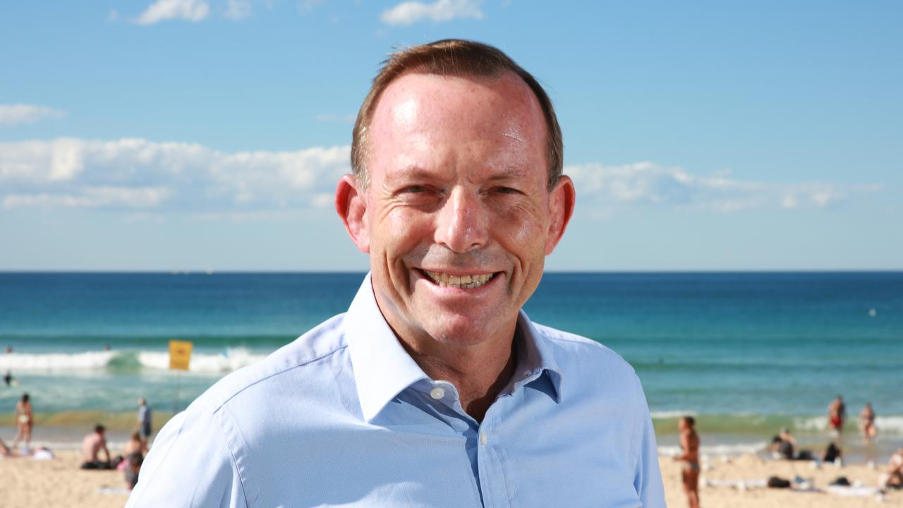 Tony Abbott to work across shores to drum up deals for Britain.