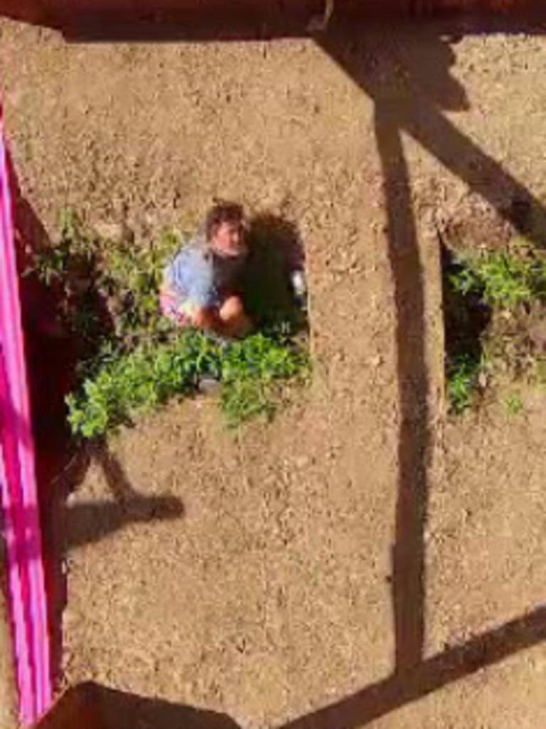 Ross crash lands into the dirt.
