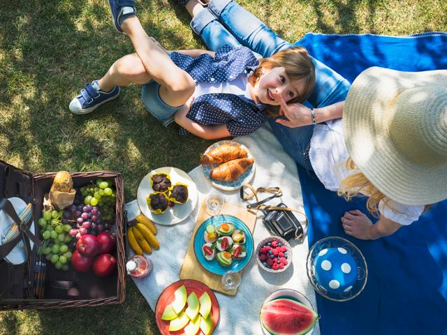 Everything you need for the perfect family picnic