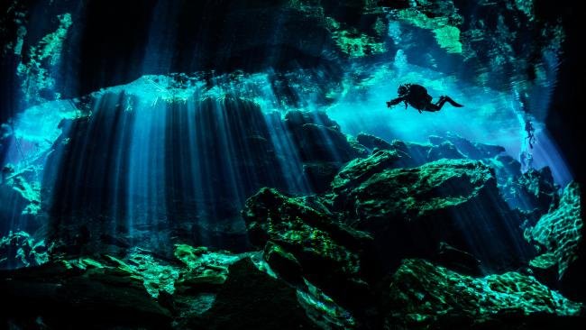 Found on the Yucatan Peninsula, some of these otherworldly pools were once sacred to the Mayans. Today they attract swimmers, snorkelers and divers.