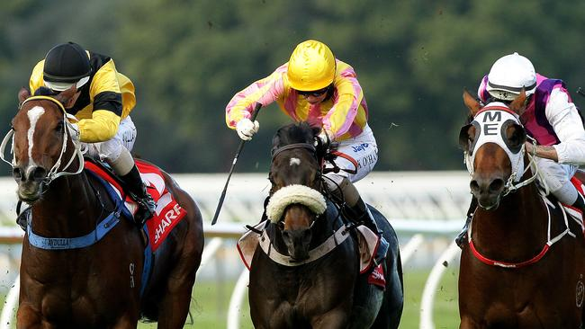 Canny Ballad (centre) trialled nicely at Warwick Farm recently and is set to resume at Rosehill on Saturday.