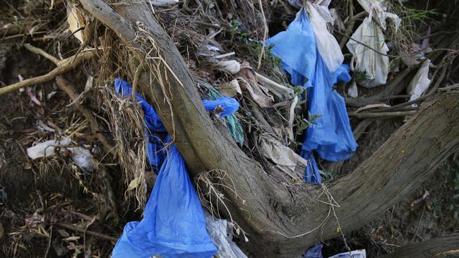 fairfield - ban the plastic bag