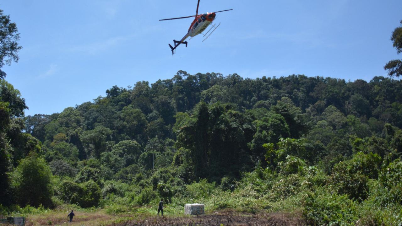 A helicopter dropping off a transport cage containing an orang-utan to be released into the Bukit Batikap Protection Forest in Gunung Mas, Central Kalimantan, Indonesia on February 16. Picture: AFP/BOSF