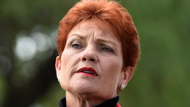 Pauline Hanson's politics put one of our biggest industries at risk — tourism. Picture: AAP Image/Dan Peled
