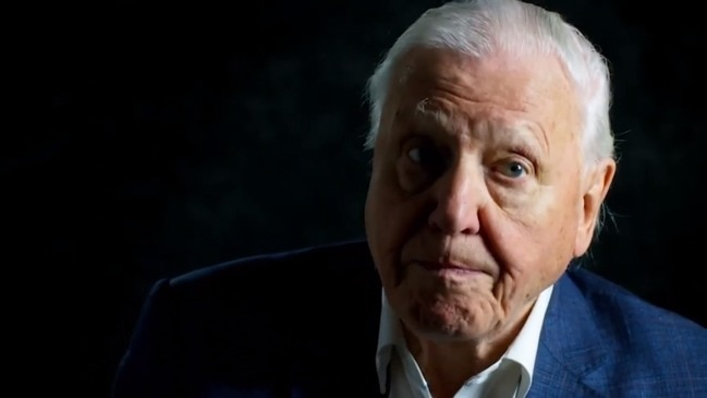 David Attenborough: A Life On Our Planet trailer