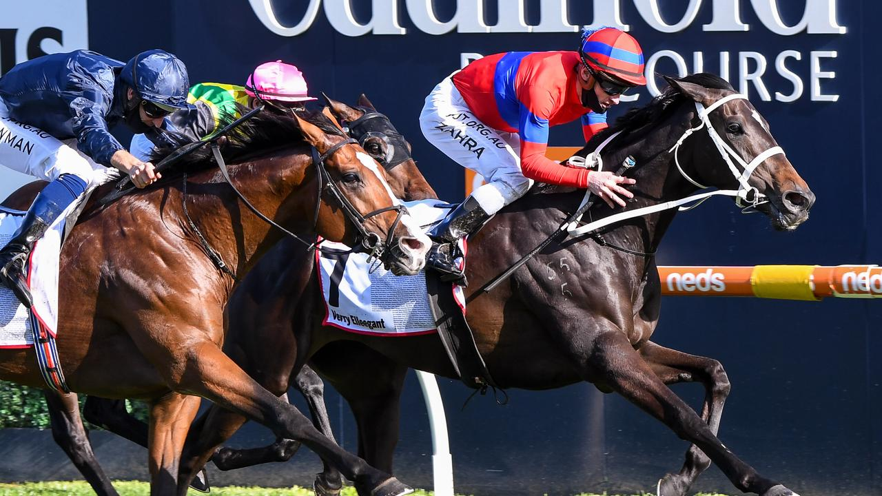 Verry Elleegant won three Group 1 races last spring, including the Caulfield Cup. Picture: Getty Images