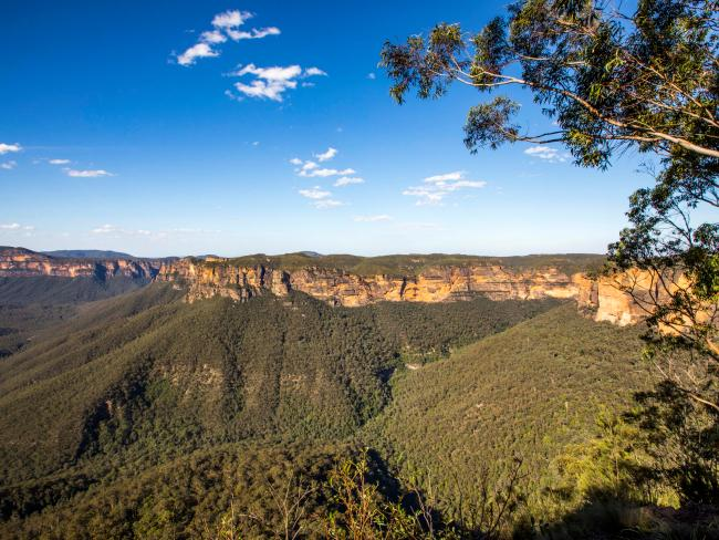 Scenic views across the Grose Valley at Evans Lookout, Blackheath. Picture: Destination: NSW