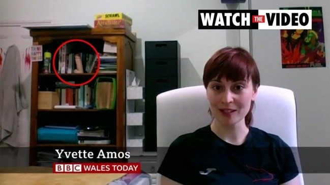 BBC guest goes viral over X-rated toy on shelf