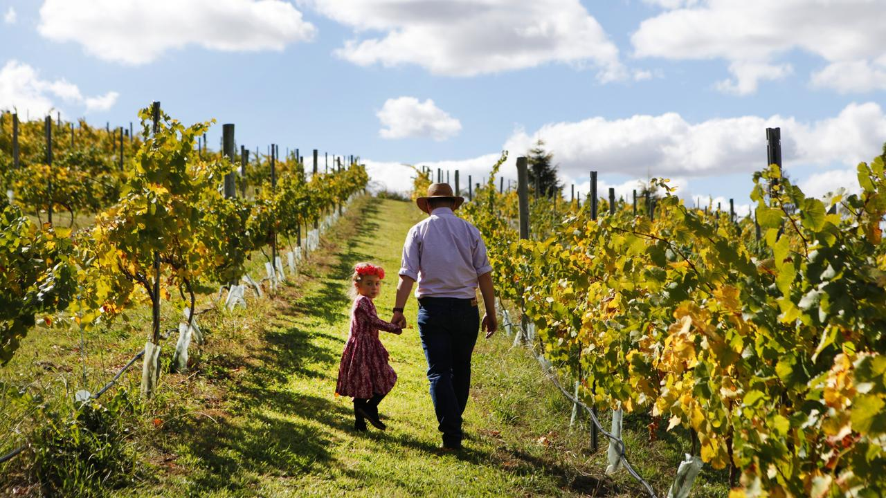 Orange has become a food and wine-lovers hot spot. Picture: Destination NSW