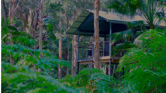 7/7 Best eco hotel in Port Macquarie: Diamond Waters Treehouse Retreat If getting back to nature is your jam, this five-hectare paradise features treehouses looking over wetlands to the Camden River. There are two treehouses on the property sleeping up to four plus fishing rods and canoes on the balconies. There's a café/bar on site and a kitchen garden too. See also What to do in Port Macquarie. Best family resorts on the NSW North Coast. 10 things no one told you about Coffs Harbour.