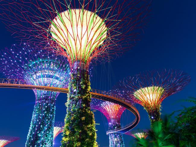 The out of this world light displays of Gardens by the Bay play host to the dramatic wedding after party.