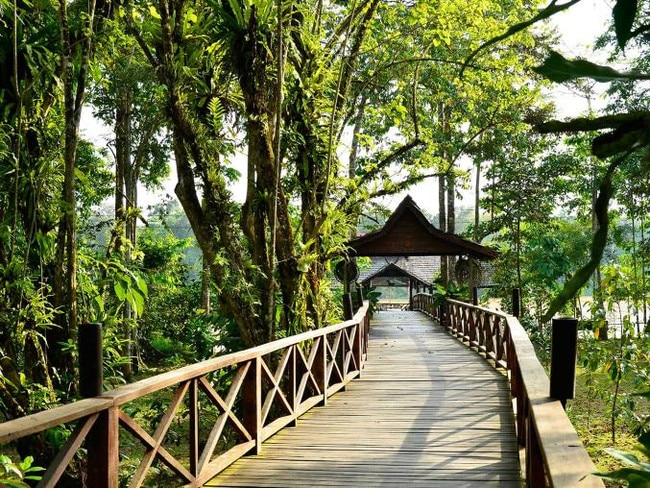 SUKAU RAINFOREST LODGE, MALAYSIA: Wild orang-utans, pygmy elephants and proboscis monkeys are just some of the animals you'll see at this jungle lodge that sits on the banks of the Kinabatangan River. This is a genuine eco-lodge, minimising its impact by reducing light and sound so as not to disturb the wildlife; connecting buildings by wooden boardwalks, avoiding erosion and allowing the plant life to thrive; and providing early morning and afternoon cruises in small electric river boats for animal and bird spotting during the hours when they are most active. At nearby Gomantong Caves, be sure to take in the awesome sight of thousands of wrinkle-lipped, free-tailed bats as they leave the caves on their nightly exodus. sukau.com