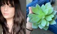 Mum spends two years watering  plant only to discover it's fake