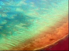Government 'delighted' at UNESCO Great Barrier Reef decision