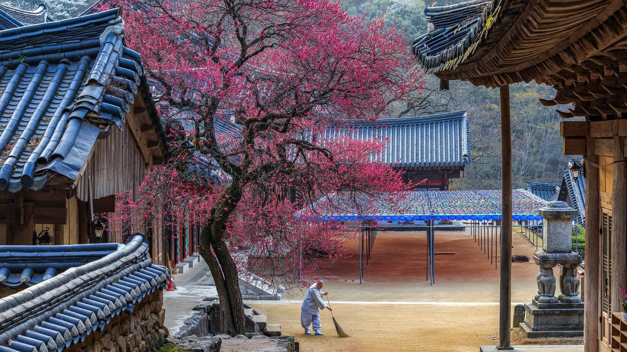 Korea has ancient wonders to explore as well as modern delights.
