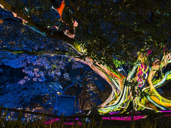 16. START EXPLORING Get the step count up, while experiencing some of what Vivid Sydney has to offer. The 3km light walk stretches from The Rocks around Circular Quay to the Royal Botanic Garden.