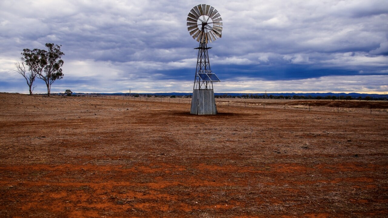 Regional areas have a 'little way to go' before full drought recovery