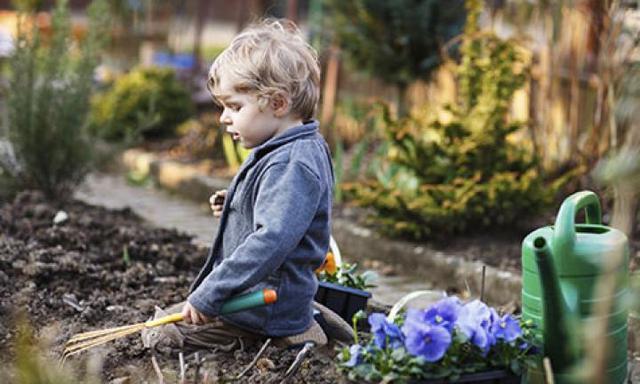Allergens in the garden