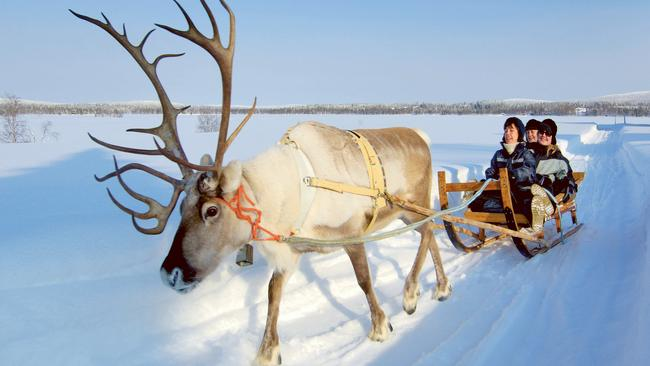 Even Santa's homeland of Lapland, which stretches from Norway to Finland, has been having unseasonably high temperatures. Photo: supplied