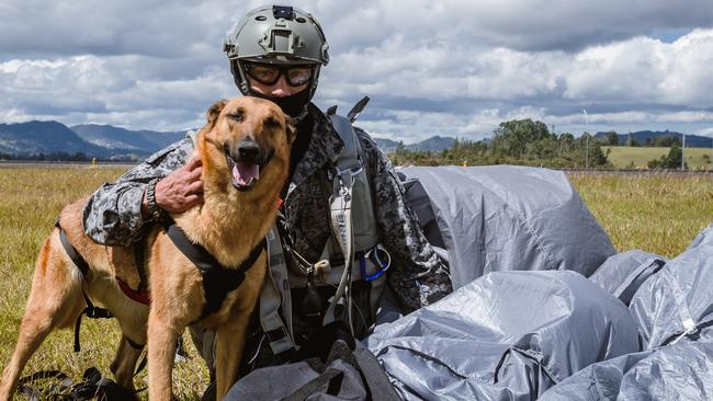 Pictured:  Chief Technician Carlos Andres Pineros Ramirez of the Colombian Air Force with Siara after her fifth and final jump of her training was completed.  A death defying danger dog jumps out of a plane at 14,000 feet to graduate as an elite member of a search and rescue unit.  Siara is a one year old Belgian malinois, and since a few days after her birth she has been trained to cope with stressful situations in different environments both day and night.  Once in the air, Siara behaves like your average dog in a car and can even be seen barking at her fellow jumpers as they pass by.  The incredible photos were taken at a Colombian Air Force base during a search-and-rescue training exercise.  SEE OUR COPY FOR DETAILS.  Please byline: Oliver Ehmig/Solent News  © Oliver Ehmig/Solent News & Photo Agency UK +44 (0) 2380 458800