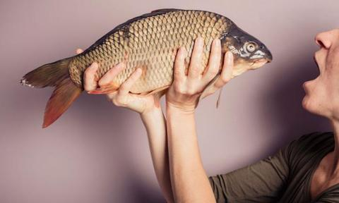 """<p><b>Fish is brain food</b></p> <p>""""Eat your fish, it's good for you,"""" says every mother to every child, like, ever. It's old wisdom that fish is good for the brain. But does this hold true in science? Why, yes. Yes it does.</p>  <p>A recent Harvard study found that the more fish mothers ate during their second trimester of pregnancy, the better their babies did on tests when they were six months old. But mums need to be mindful of the kind of fish they're eating when pregnant to avoid the mercury-laden ones, such as swordfish.</p>"""