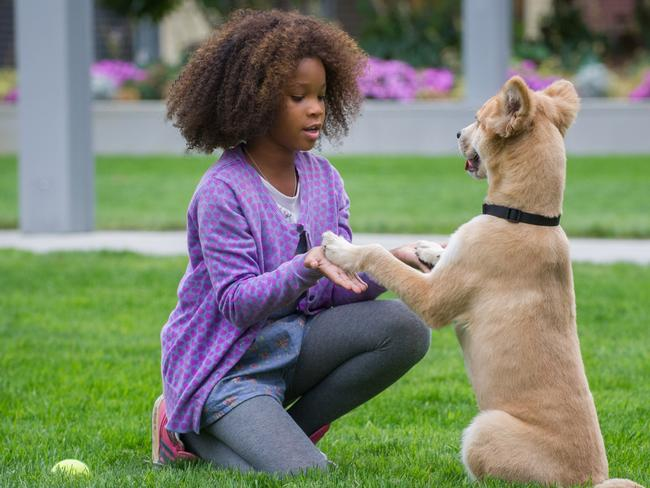 """New Annie ... Oscar winner Quvenzhane Wallis has been nominated for her starring role in the new version of """"Annie"""". Pictur: AP Photo/Columbia Pictures"""