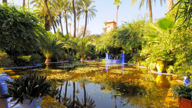 Work on the garden was started by French artist Jacque Majorelle in an Art Deco meets Moorish design influences style, and he filled it with exotic botanicals. Today, there is also the Berber Museum, the Islamic Art Museum of Marrakech and the Musee Yves Saint Laurent onsite. Picture: Viault / Wikimedia Commons