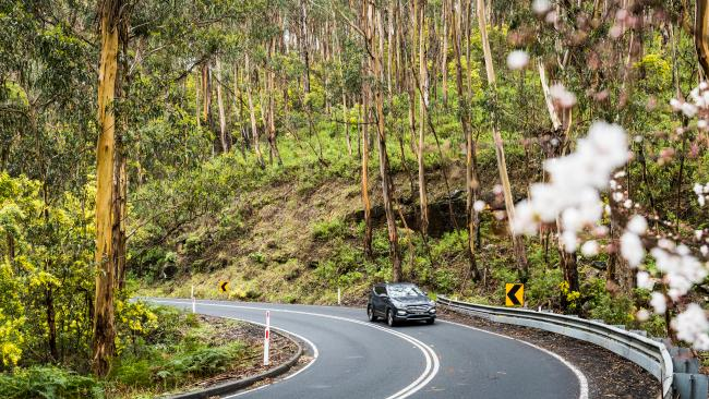 The Great Ocean Road has surprises at every turn. Picture: Supplied