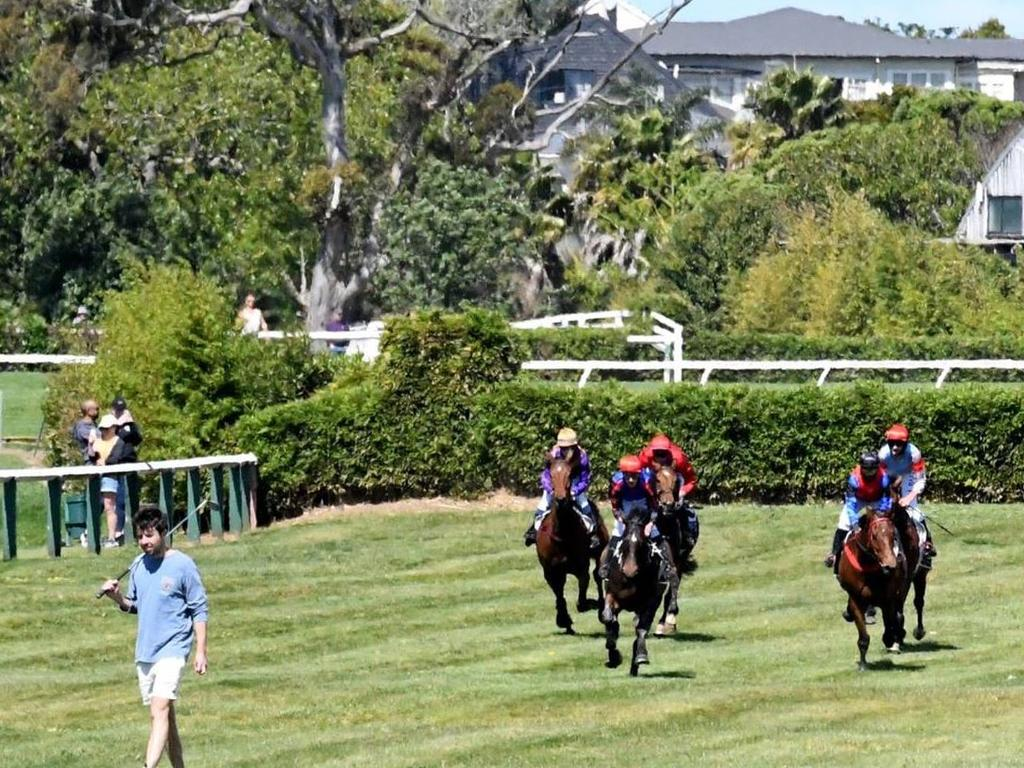 Errant golfer walks into path of horses during Great Northern Steeplechase at Ellerslie. Photo: Kenton Wright