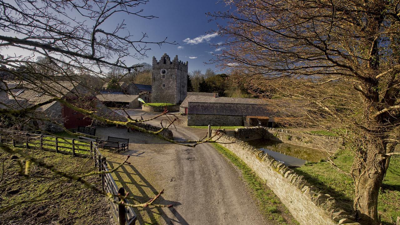Castle Ward is surrounded by an 820-acre walled demesne with gardens and woodland. Picture: Tourism Northern Ireland
