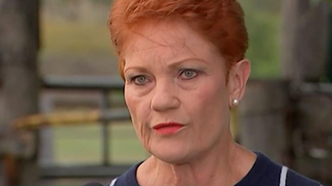 One Nation leader Pauline Hanson has accepted Steve Dickson's resignation. Picture: ABC