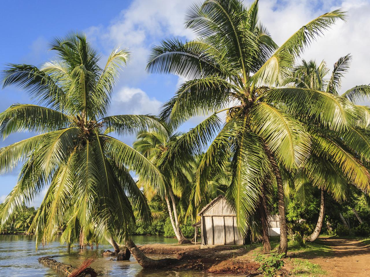 Tropical Madagascar has potential as a tourist destination — particularly among surfers. Picture: Thinkstock