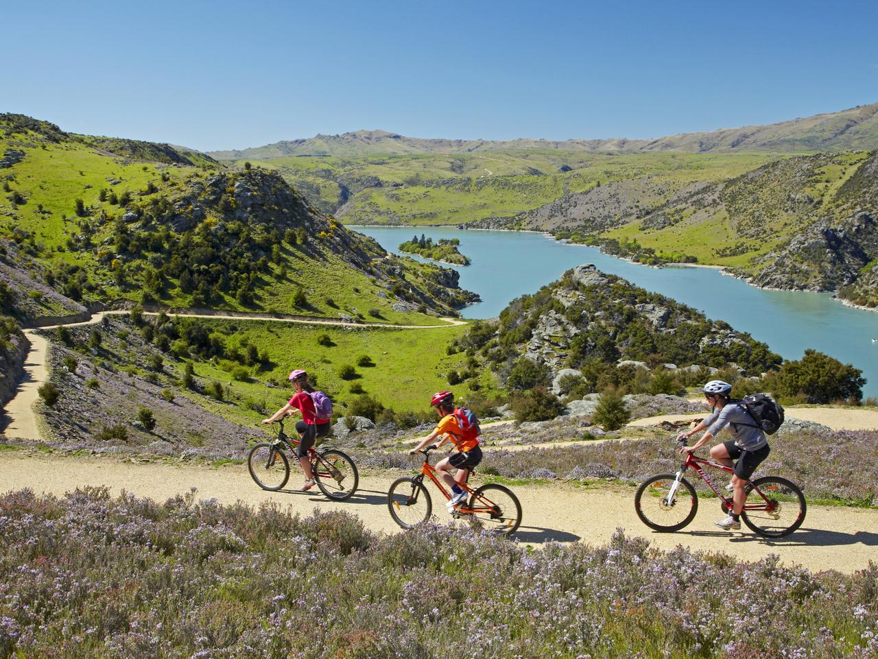 Cycling next to the Roxburgh Gorge. Picture: Supplied