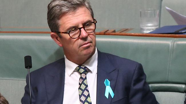 David Gillespie and Luke Hartsukyer in Question Time in the House of Representatives Chamber, Parliament House in Canberra. Picture Kym Smith
