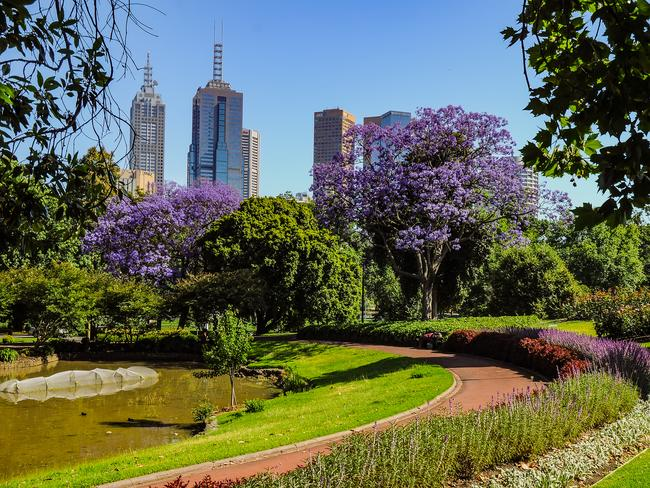"""TRY: The luxurious Queen Elizabeth's """"Australia's Gardening Journey"""" from Cunard. There will be nine gardening experts along to give you horticulture lessons, and port calls at Hobart and Melbourne (pictured)."""