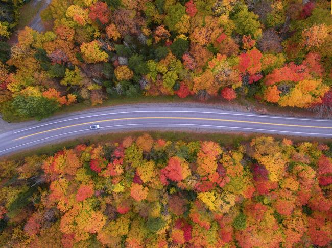 Photo and caption by Manish Mamtani / National Geographic Travel Photographer of the Year Contest A drive to remember. Aerial view of the Scenic drive and the beautiful Fall colors of New Hampshire. I used a drone to capture the fall colors that cannot be seen from the road.