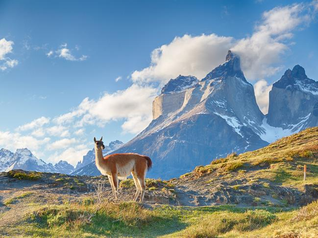 CHILE: It seems like Chile's hogging the limelight lately. Lonely Planet named it the world's No. 1 country to visit in 2018; National Geographic rated its capital, Santiago, as one of its top trips of the year; and it took out one of the highest rankings on the Good Country Index of. Between the dramatic peaks of Andes, the striking glaciers of Patagonia and a thriving food and wine scene, what's not to love? Over the past year, the country has received plaudits for its efforts to prevent the removal of endangered Andean deer from Patagonia.