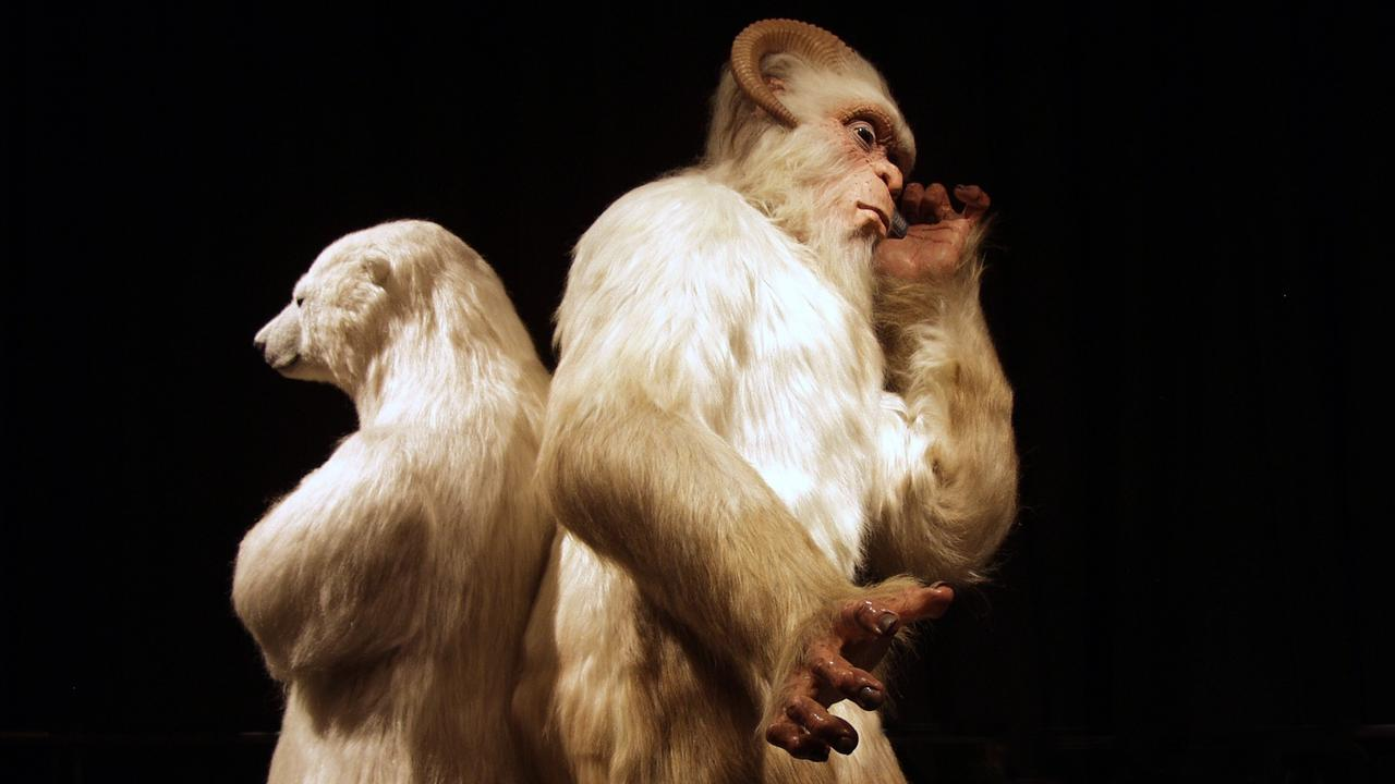 No one has ever taken a photo of a Yeti, but this is what one could look like, seen here with a model of a polar bear at Scienceworks, Victoria.