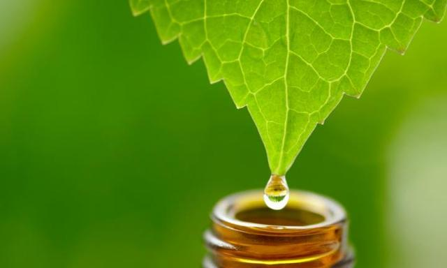 Can natural medicine help your child?