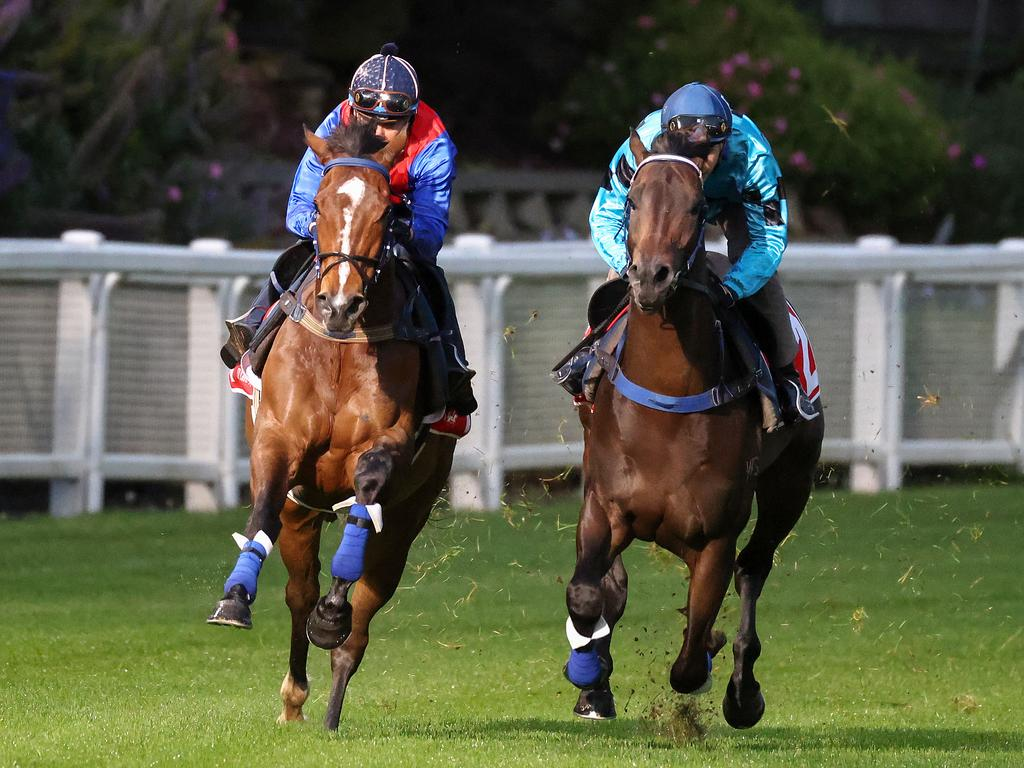 Zaaki and Mo'unga during Breakfast With The Best at Moonee Valley Racecourse on October 19, 2021 in Moonee Ponds, Australia. (George Sal/Racing Photos via Getty Images)