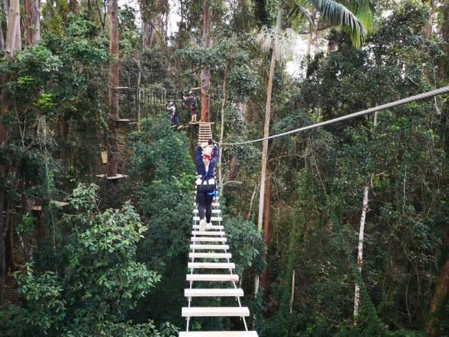 6/13Canyon Flyer - Treetop Challenge Tamborine Mountain  How does being 60 metres above rainforest at speeds of up to 70 KMH and attached to a zip line sound to you? If it sounds like great fun, then you must make this adrenaline-inducing experience a part of your itinerary next time you are on the Gold Coast. treetopchallenge.com.au/canyon-flyer
