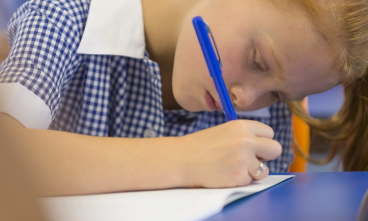 NAPLAN results reveal concerning trend