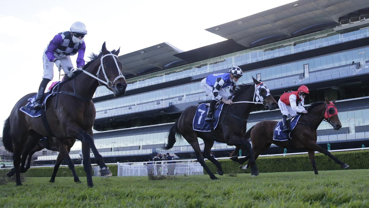 Randwick will host all meetings in the metro area for the next four weeks. Picture: Getty Images