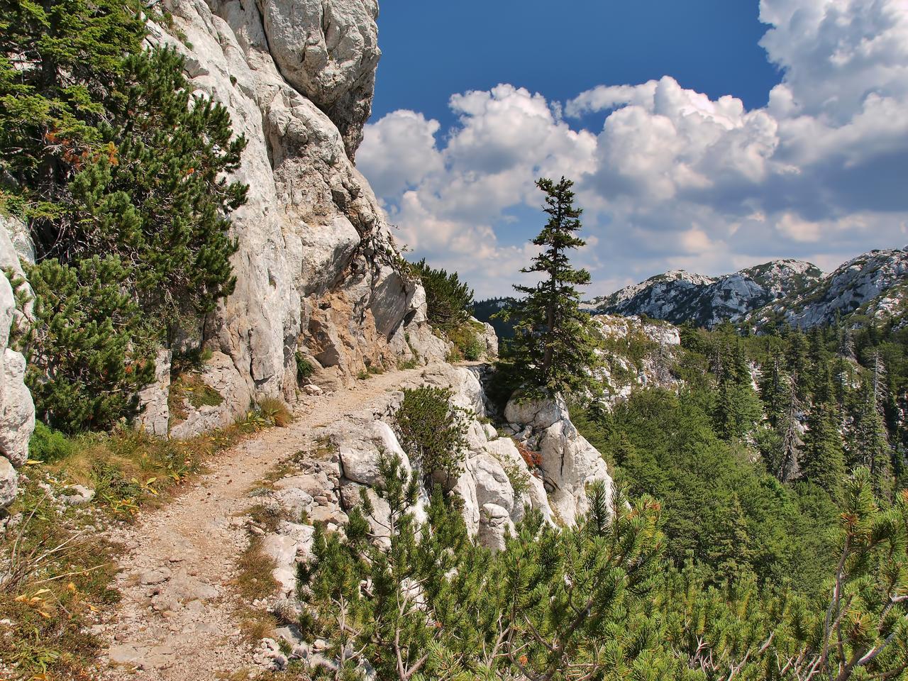 Velebit mountain scenery