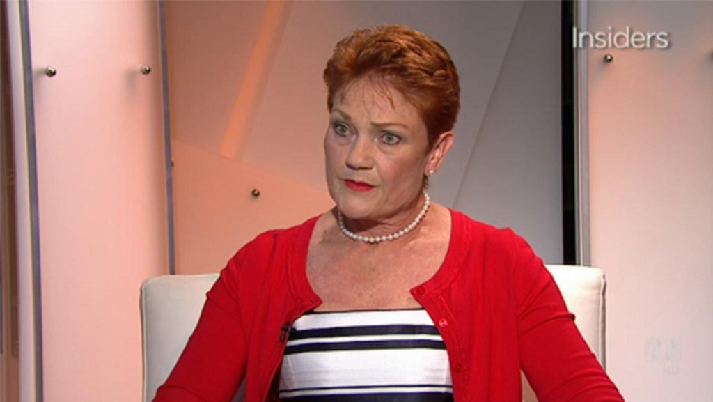 Pauline Hanson calls Labor 'hypocrites'