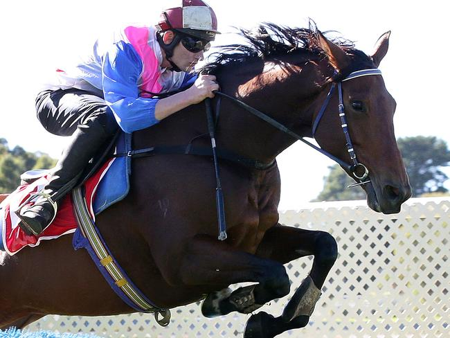 Robbie Laing has turned to track rider and former jumps jockey Aaron Lynch to steer home Lord Of The Sky in the feature race at Caulfield. Picture: Sarah Reed
