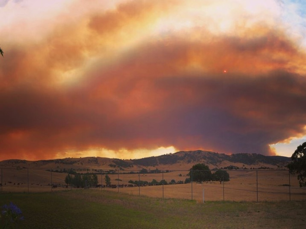Photographs taken by country singer Fanny Lumsden as she and her family evacuated from Tooma, which sits between the Dunns Road and Walwa fires.