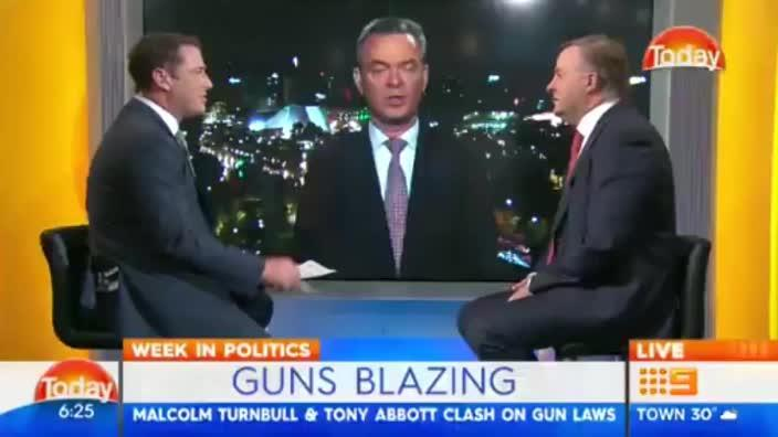 Pyne and Albanese square off over guns deal