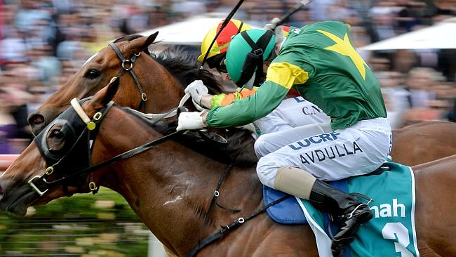 Snitzerland (rails) and Lankan Rupee battle out the Dilmah Earl Grey Stakes last spring.