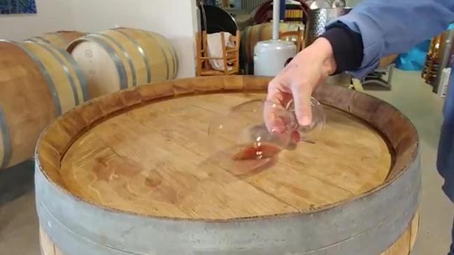 Is this the best way to taste wine?